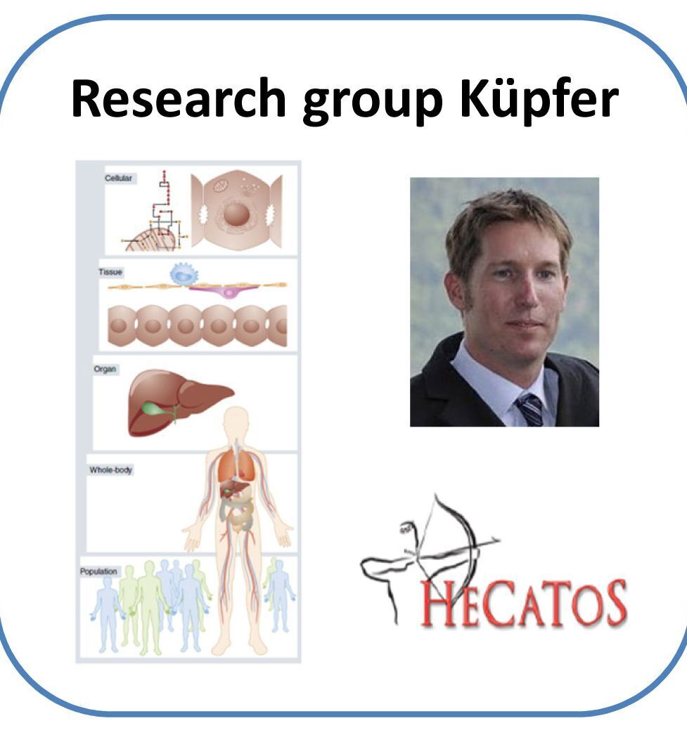 Picture of the Küpfer Group